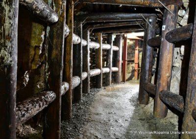 kopalnia-uranu-w-kletnie-drewniana-obudowa-sztolni-2